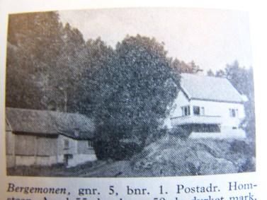 Gamle hus