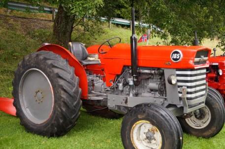 Traktoren vokser: en Massey Ferguson 165.