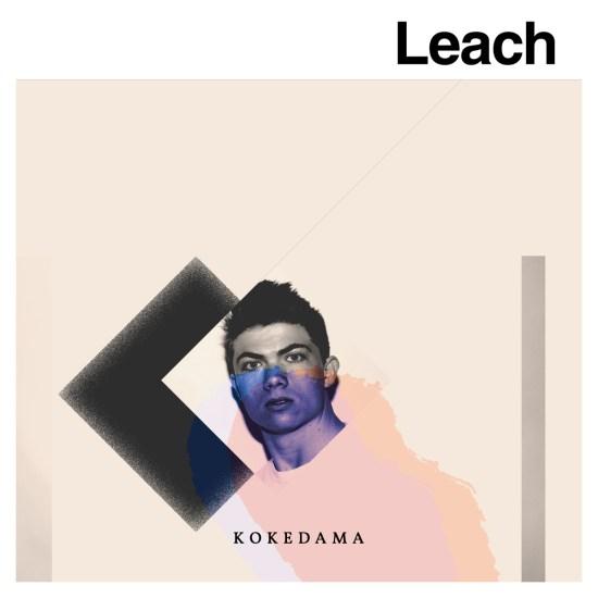 Leach Kokedama