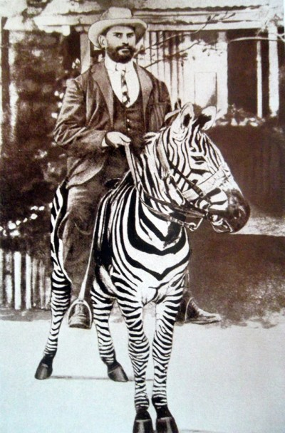 In case you are wondering just how flamboyant one can be when riding a zebra...more so one that knows how to pose for the camera. Socialite zebra, is that you? Image from www.geni.com