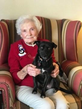 doris_dogs Day in the Life: Doris Sherk