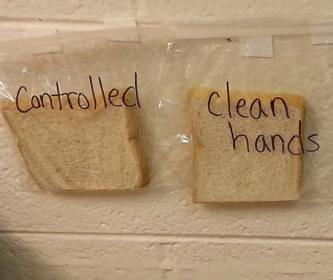 clean-hand-science-experiment-3