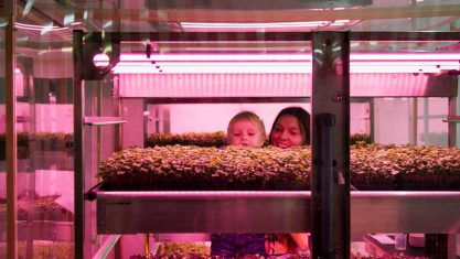ikeas-space10-hydroponic-vertical-farm-6