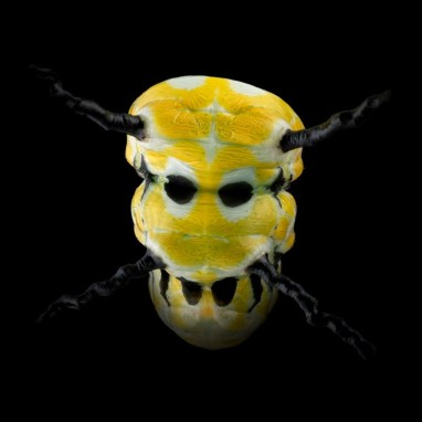 pascal-goet-insect-mask-7