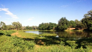Zimbabwe-Mana-Pools-Hi-Res-IMG_9044-Photo-credit-Will-Whitford-1920x1080