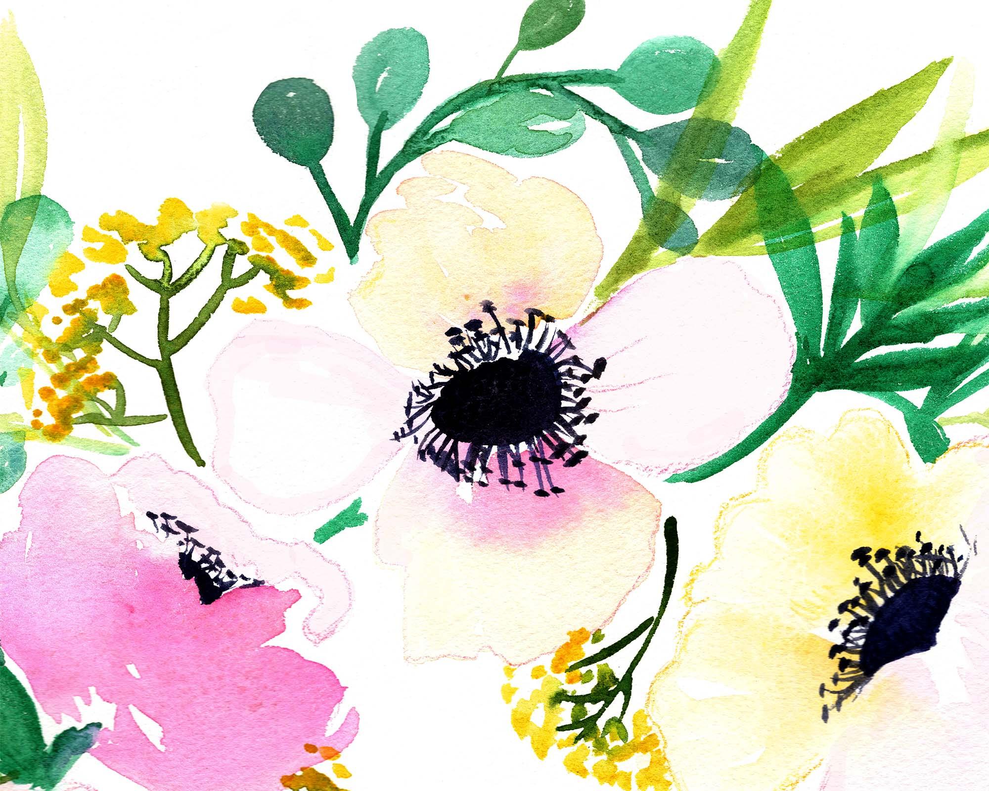 Anemone Details