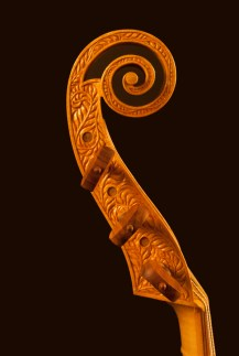 Decorated scroll