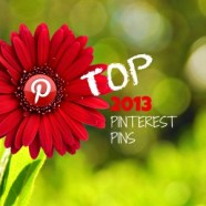 Top Pins on Pinterest in 2013 on Owens Investigations