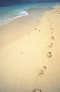 A picture of footprints on a beach.