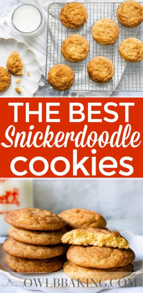 Snickerdoodle cookies recipe pinterest