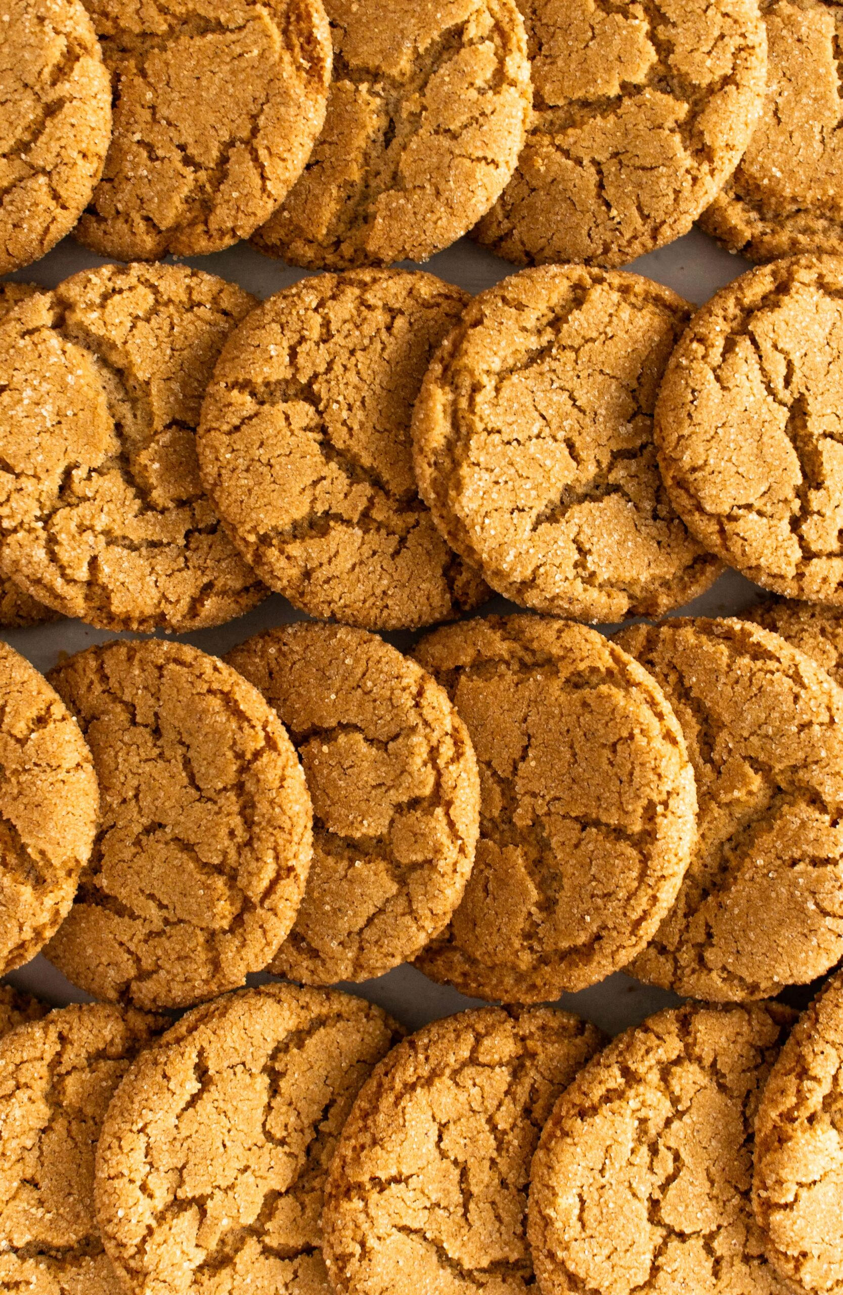 Maple Ginger Snaps No Molasses Owlbbaking Com