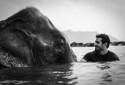 Rosolie-Elephant.jpg
