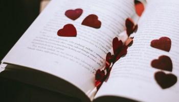 Poetry: Adventures with Books - Velda Blumhagen | Owlish