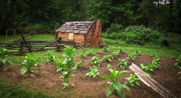 1740's Frontier Farmhouse