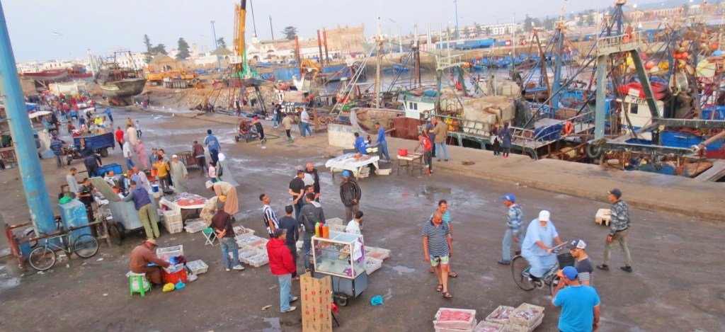 morocco-travel-tips-for-first-time-visitors-fish-market