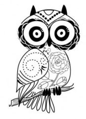 OWLLineArt