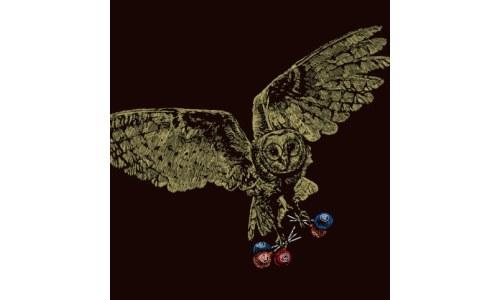 Mister Owl Tootsie Pop Shirt