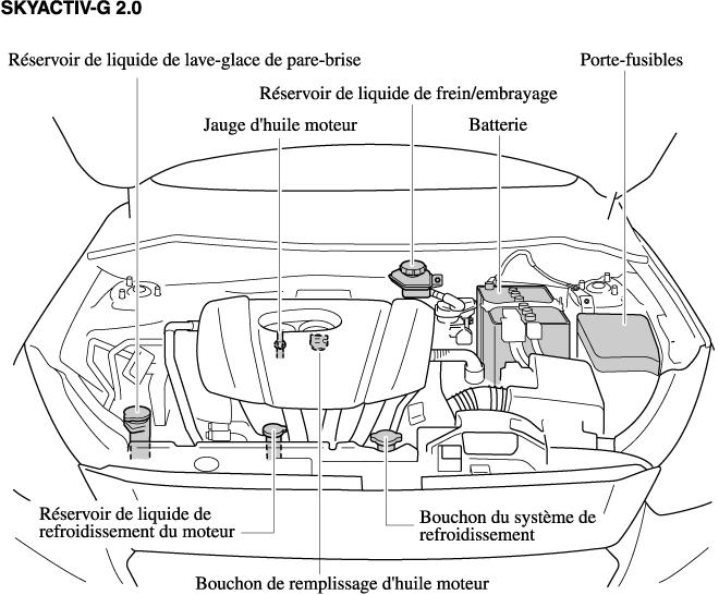 Vue générale du compartiment moteur