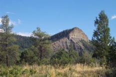 Aspen Springs Landscape