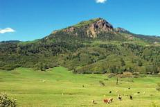 Upper hwy 84 pagosa pasture