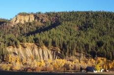 Upper hwy 84 pagosa landscape2