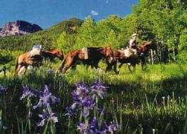 Pagosa springs horseback riding