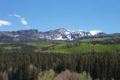 Blue Mountain Ranches mountain view