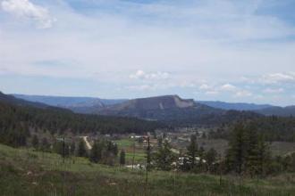Elk Park Meadows View