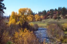 Navajo River