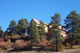 home pagosa in the pines