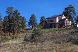 condo pagosa in the pines
