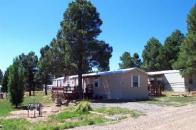 Pagosa Vista neighborhood real estate