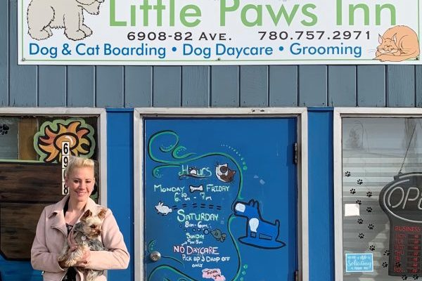 How Little Paws Inn reimagined pet daycare