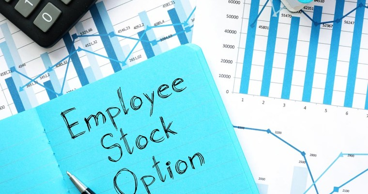 Employee Stock Option Plans: A Guide for Canadian Startups