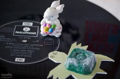RSD14-Easter-NameDay-Oxalis-7428