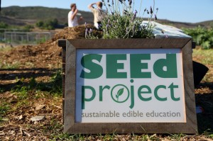 SEEd Project 2