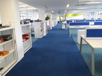 Blue Carpet Office Design