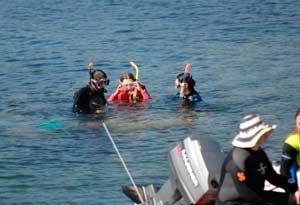 naiad-snorkeling