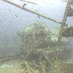 red-sea-diving_010212_0236.jpg