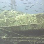 red-sea-diving_010212_0243.jpg