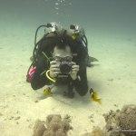red-sea-diving_020212_0412.jpg