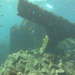 red-sea-diving_310112_0310.jpg