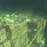 red-sea-diving_310112_0312.jpg