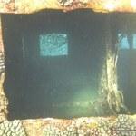 red-sea-diving_310112_0343.jpg