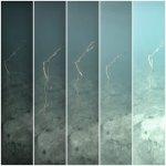 Exposure series on GoPro - left to right: EV -2, -1, 0, +1, +2 (location TBC/Chris Stevens)