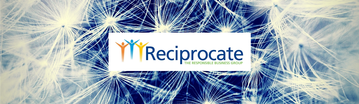 Reciprocate logo with dandelion seeds in background