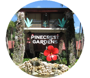 Pinecrest FL Real Estate - Grove Properties
