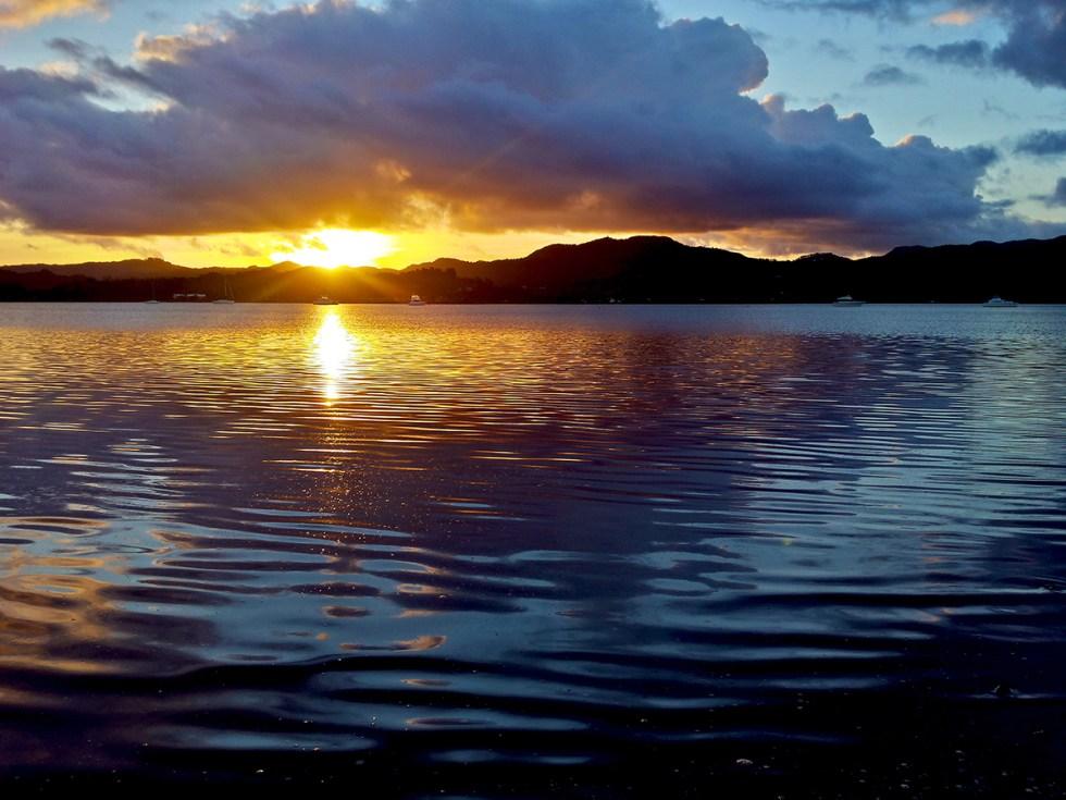 Estuary blog