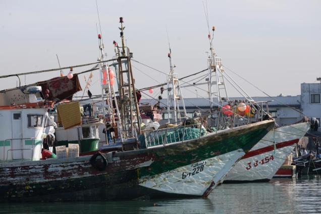 Photo-5bis bateau peche maroc