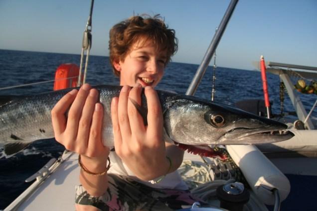 nemo-et-barracuda